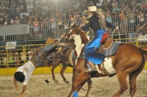 Público observa competidor ir ao chão após ser derrubado por uma égua da Companhia Tony Nascimento / Foto: Gabriela Nascimento