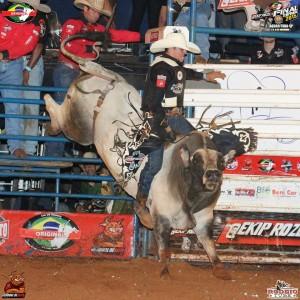 Touro Assédio Moral / Foto: Rodeio Tube