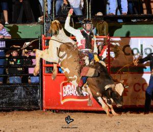 Rodrigo Alexandre em Colorado no rodeio de equipes esse ano / Foto: Rodolfo Lesse